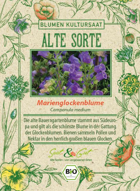Saat & Gut BIO-Marienglockenblume