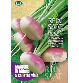 Reinsaat BIO-Mairübe Di Milano a colletto viola