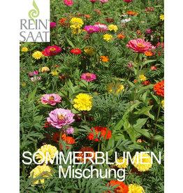 Reinsaat BIO-Blumen Mischung Sommertraum