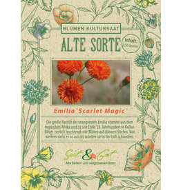 Saat & Gut BIO-Quastenblume Emilia 'Scarlet Magic'