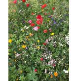 Saat & Gut BIO Blühender Naturgarten & Blumenwiese - Dose