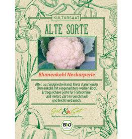 Saat & Gut BIO-Blumenkohl Neckarperle