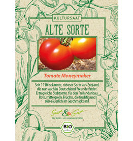 Saat & Gut BIO-Tomate Moneymaker