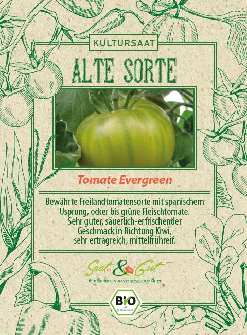 Saat & Gut BIO-Tomate Evergreen