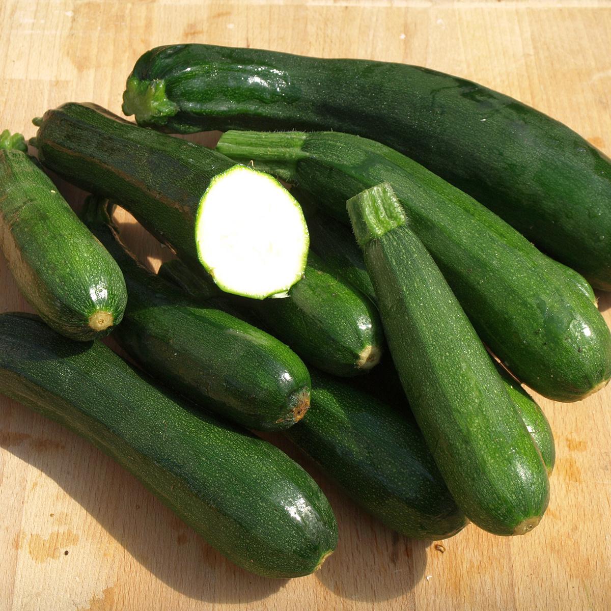 Saat & Gut BIO-Zucchini Black Beauty