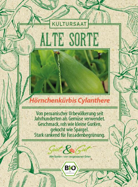 Saat & Gut BIO-Hörnchenkürbis Cyclanthere