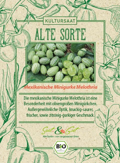 Saat & Gut BIO-Mexikanische Minigurke Melothria