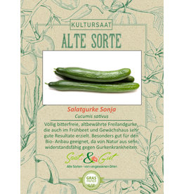 Saat & Gut BIO-Salatgurke Sonja