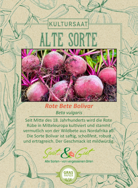 Saat & Gut BIO-Rote Bete Bolivar
