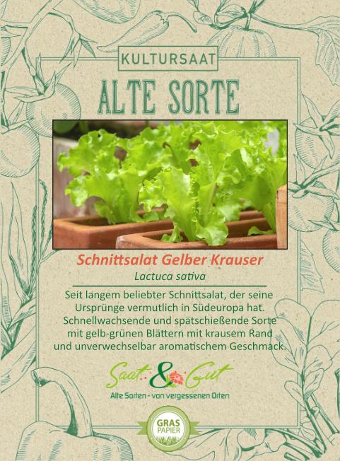 Saat & Gut BIO-Schnittsalat Gelber Krauser