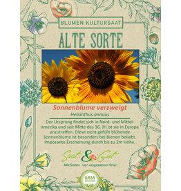Saat & Gut BIO-Sonnenblume verzweigt