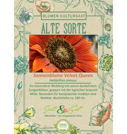 Saat & Gut BIO-Sonnenblume Velvet Queen