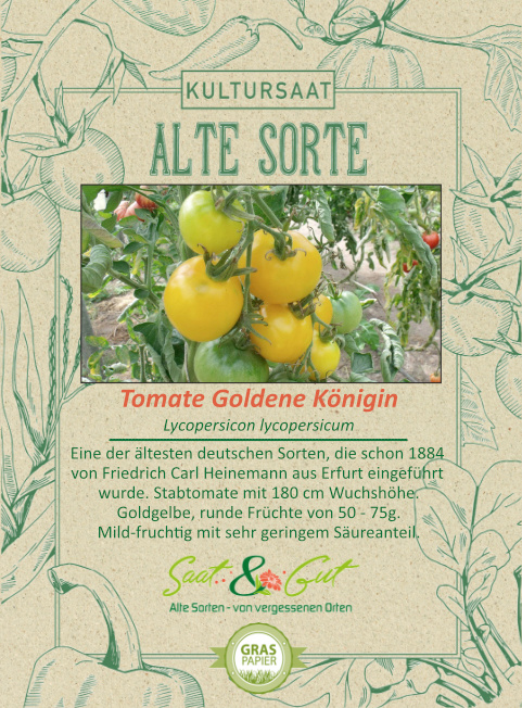 Saat & Gut BIO-Tomate Goldene Königin