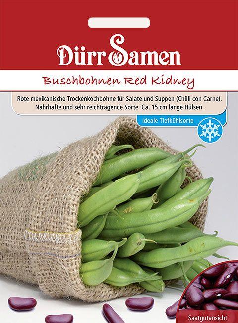 Dürr Samen Buschbohnen  Red Kidney