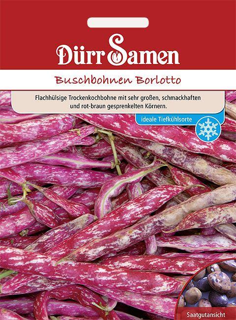 Dürr Samen Buschbohnen  Borlotto
