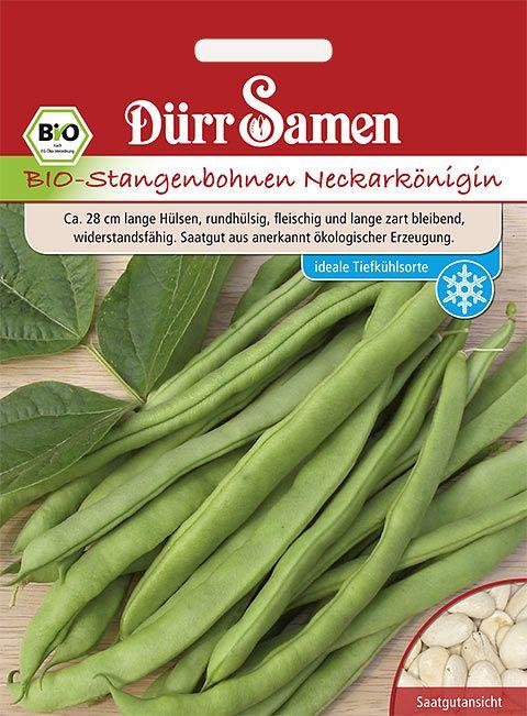 Dürr Samen BIO-Stangenbohnen  Neckarkönigin