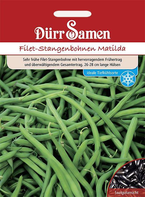 Dürr Samen Filet-Stangenbohnen  Matilda