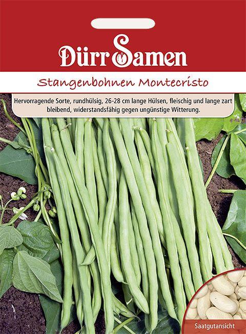 Dürr Samen Stangenbohnen  Montecristo