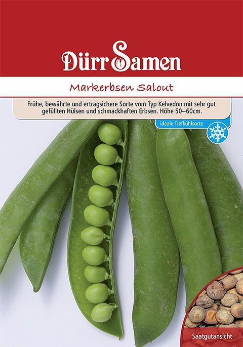 Dürr Samen Markerbsen  Salout (Vorteilspackung)