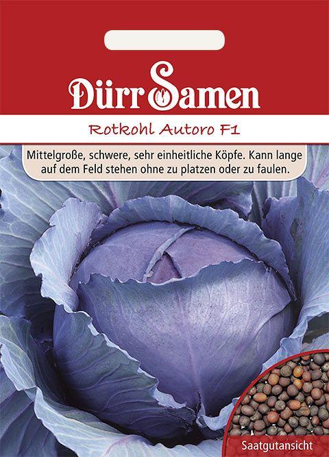 Dürr Samen Rotkohl Autoro F1