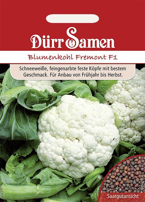 Dürr Samen Blumenkohl  Fremont F1