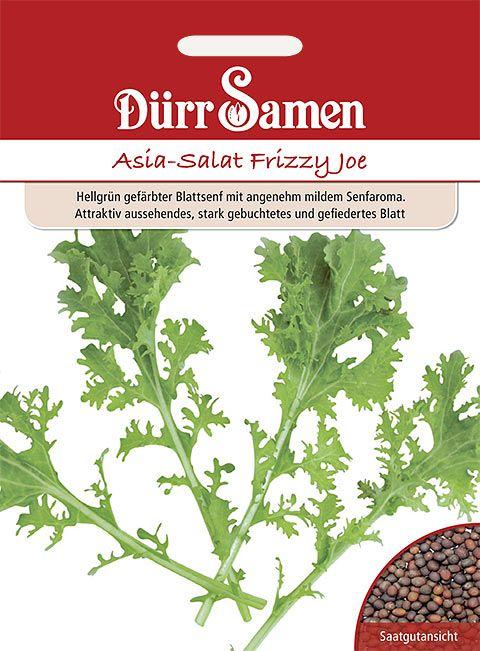 Dürr Samen Asia-Salat  Frizzy Joe