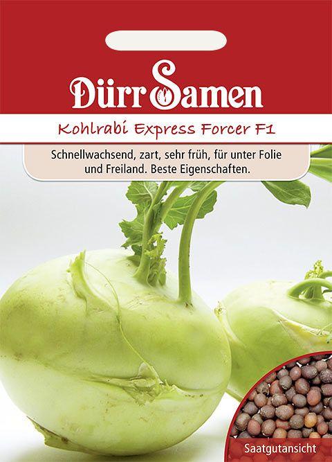 Dürr Samen Kohlrabi  Express Forcer F1