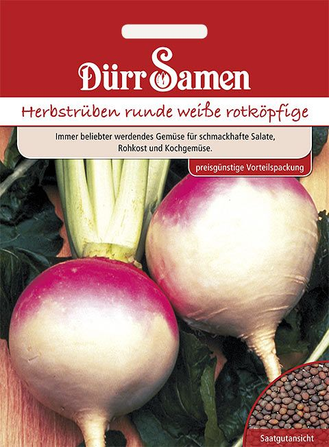 Dürr Samen Herbstrüben  runde weiße rotköpfige (Vorteilspackung)