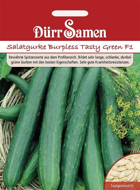 Dürr Samen Salatgurken  Burpless Tasty Green F1