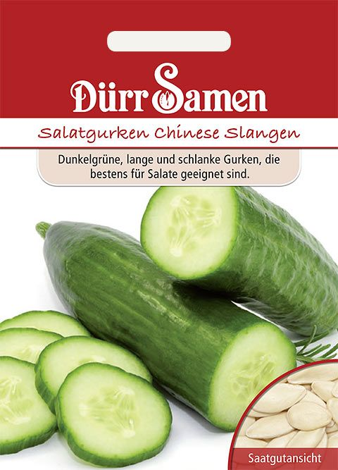 Dürr Samen Salatgurken  Chinesische Slangen