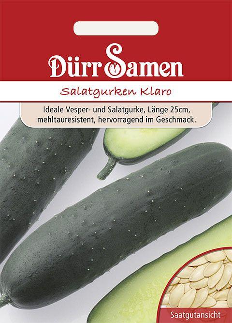 Dürr Samen Salatgurken  Klaro