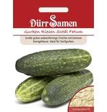 Dürr Samen Salatgurken  Riesen Schäl Fatum