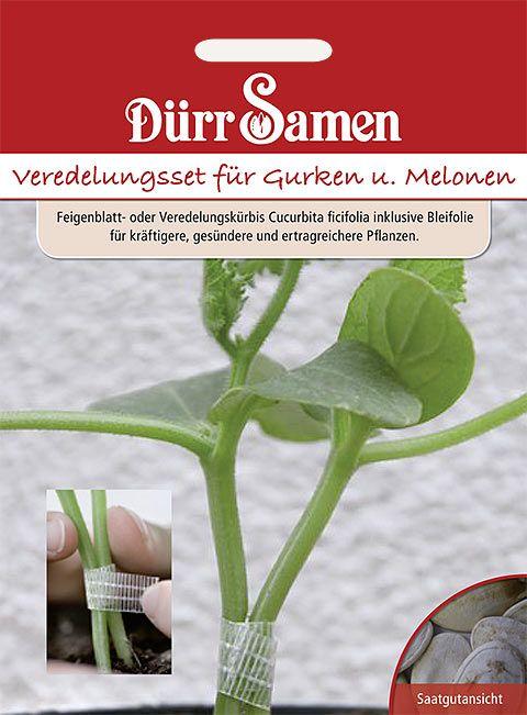 Dürr Samen Veredelungs-Set Für Gurken und Melonen