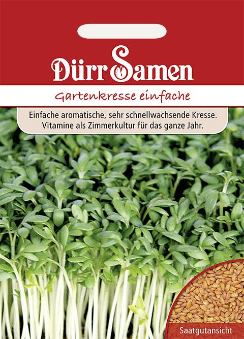 Dürr Samen Gartenkresse einfache