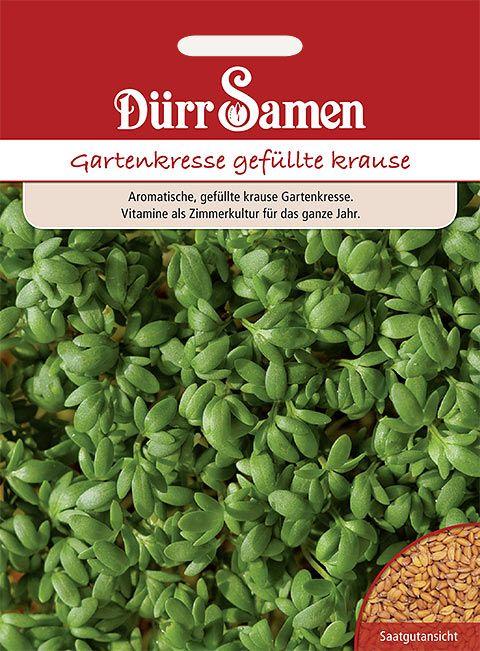 Dürr Samen Gartenkresse  gefüllte krause