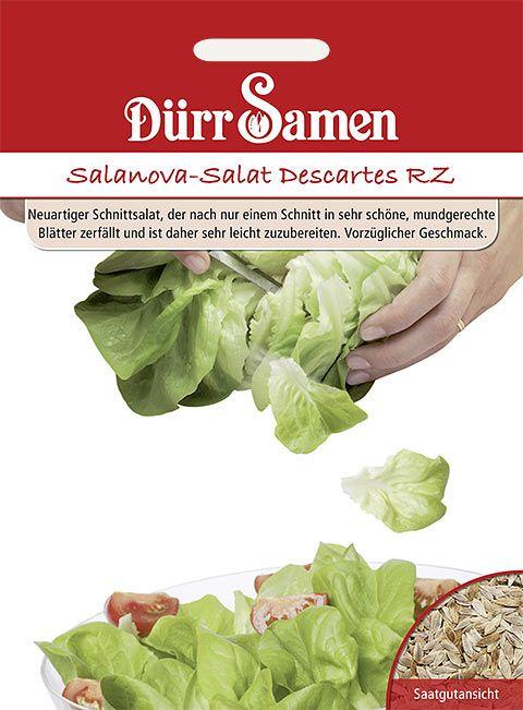 Dürr Samen Salanova-Salat  Descartes RZ