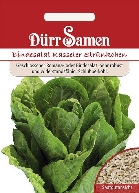 Dürr Samen Bindesalat Kasseler Strünkchen