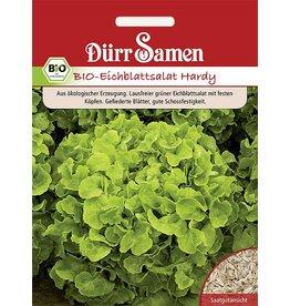 Dürr Samen BIO-Eichblattsalat  Hardy grün