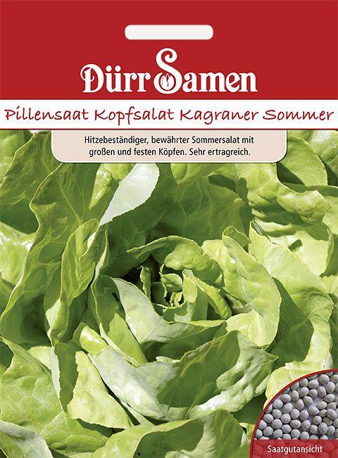 Dürr Samen Pillensaat Kopfsalat  Kagraner Sommer