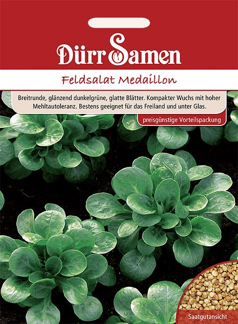 Dürr Samen Feldsalat  Medaillon