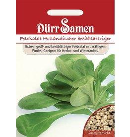 Dürr Samen Feldsalat  Holländer