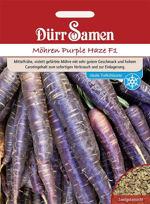 Dürr Samen Möhren  Purple Haze F1