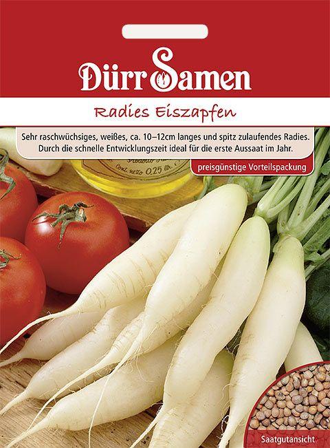 Dürr Samen Radies Eiszapfen (Vorteilspackung)