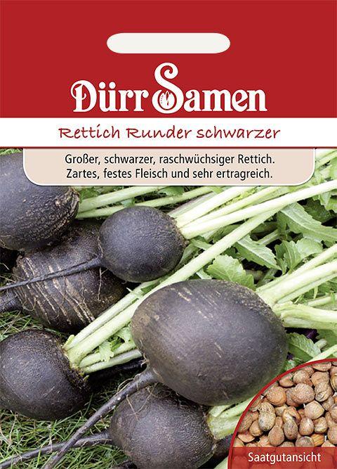 Dürr Samen Winterrettich Runder schwarzer