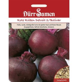 Dürr Samen Rote Rüben  Detroit 2/Bolivar