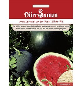 Dürr Samen Wassermelone Red Star F1