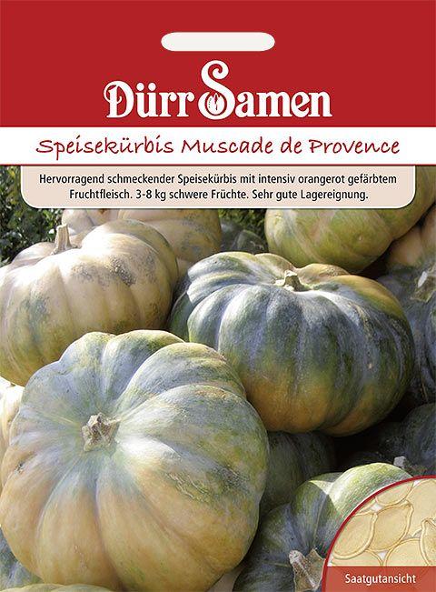 Dürr Samen Speisekürbis Muscade de Provence