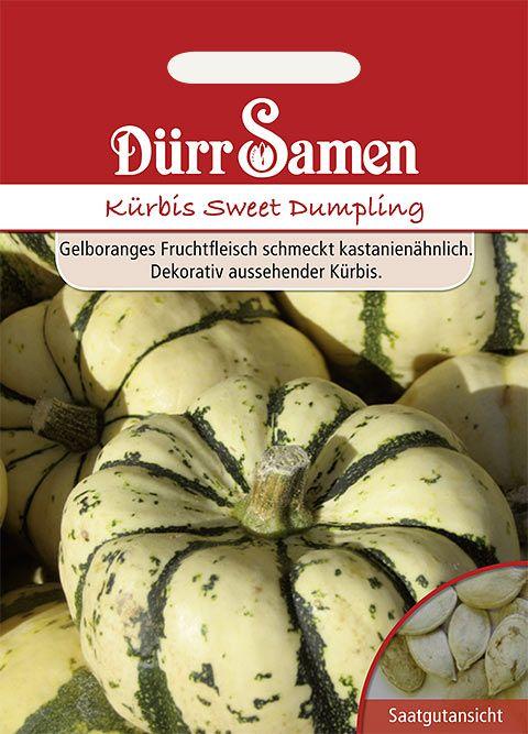 Dürr Samen Kürbis  Sweet Dumpling
