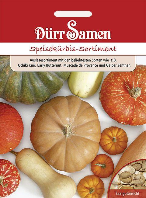 Dürr Samen Speisekürbis-Sortiment