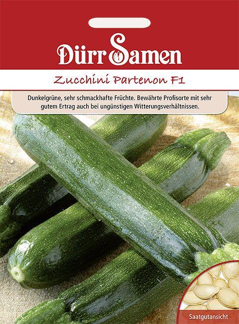 Dürr Samen Zucchini Partenon F1